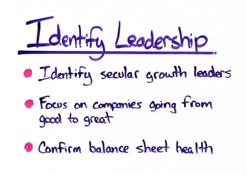 identify leadership