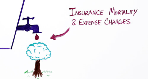 Insurance-Mortality-and-Expense-Charges
